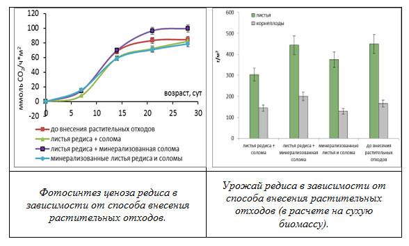 Полученные в модели стационарные (А) распределения органических веществ в почве для разных природных зон и кинетика формирования почвы (Б).