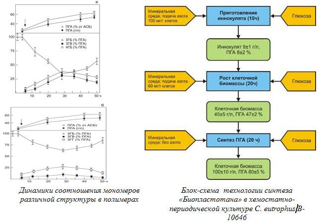 Динамики соотношения мономеров  различной структуры в полимерах
