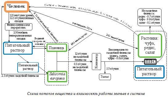 Схема потоков вещества и взаимосвязь работы звеньев в системе