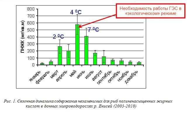 Рис. 1. Сезонная динамика содержания незаменимых для рыб полиненасыщенных жирных кислот в донных микроводорослях р, Енисей (2005-2010)