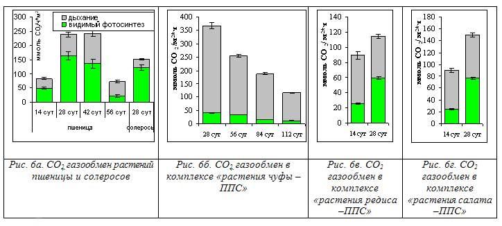 Рис. 6а. СО2 газообмен растений пшеницы и солеросов Рис. 6б. СО2 газообмен в комплексе «растения чуфы – ППС»Рис. 6в. СО2 газообмен в комплексе «растения редиса –ППС»Рис. 6г. СО2 газообмен в комплексе «растения салата –ППС»