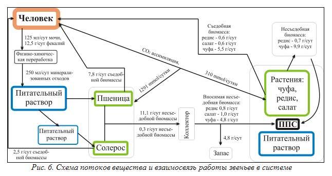 Рис. 6. Схема потоков вещества и взаимосвязь работы звеньев в системе